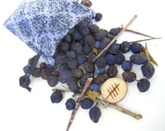 Sale!! Blackthorn Berries- Dried Sloes-Hand Harvested From the Hedgerows of Devonshire UK-For Crafting and Spell Workings