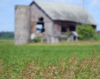Faded Farm
