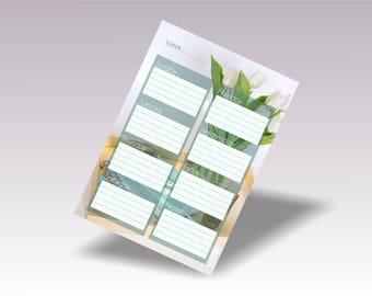 Weekly Planner Printable Template Vertical, Weekly Planner Layout Sunday Start Monday Start, A4 Week Planner Floral, Week Planning Pdf