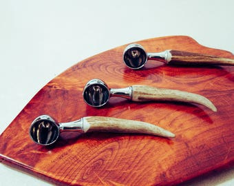 Antler Coffee Scoop