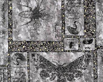 tissu patchwork Lonni Rossi pour Andover fabrics