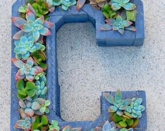 Succulent Letter