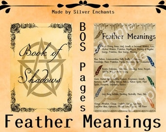 BOS Pages - Feather Meanings