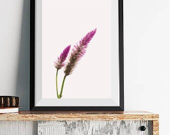 Purple Flower Poster Instant Download, Printable Wall Art, Flower Print, Purple Floral Wall Art, Floral Photography Print, Digital Download