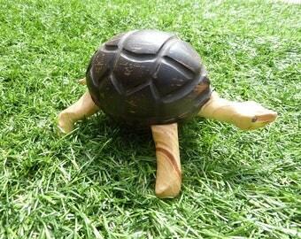 Coconut and wood turtle box
