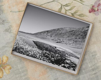 Notecards-Badwater Basin