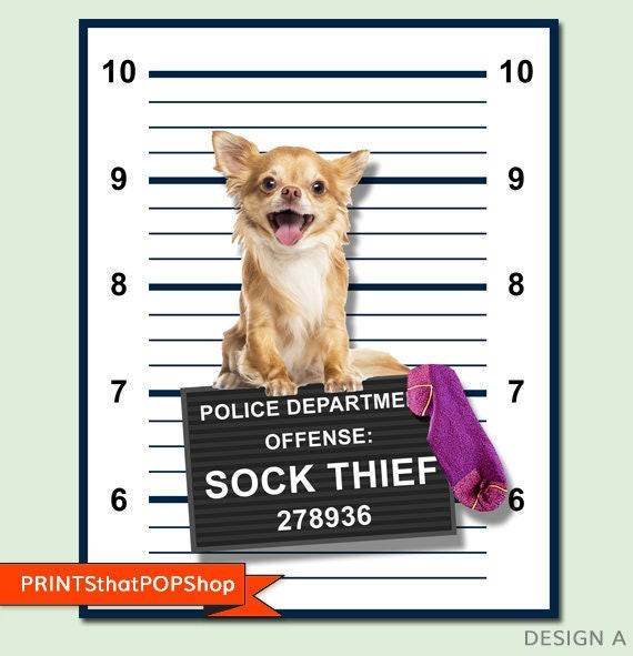 custom pet photo your pet photo bad dog poster pet mugshot poster