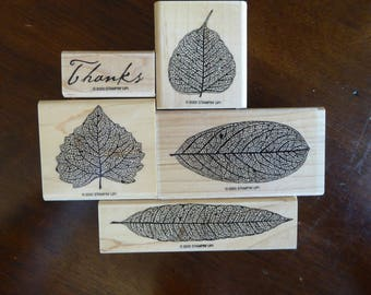 Autumn Stamps by Stampin Up (Retired)