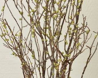 Berry Green Sweet Huck Branches | Sweet Huckleberry | Dried Branches | Dried Decor