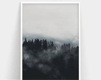 Forest Print, Forest Photography, Nature Prints, Forest Wall Art, Nature Wall Art, Woodland Print, Black and White Forest, Minimalist Art