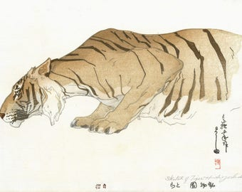 "Japanese Art Print ""Sketch of Tiger (Dobutsu-En, Tora)"" from the Zoological Garden Series by Yoshida Hiroshi, woodblock print reproduction"