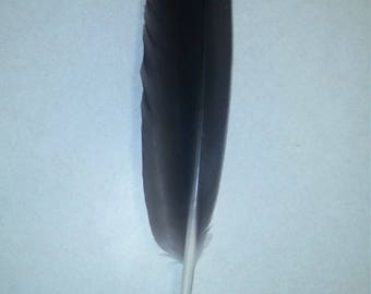 Authentic Native American Feather Hair piece