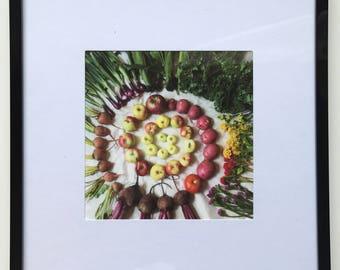 FOOD PHOTOGRAPHY PRINT - farmers market produce art - kitchen art - fine art print - spiral - apples - beets - flowers - potatoes