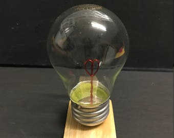 Wire Heart Bulb