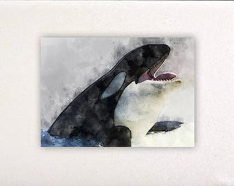 Killer Whale - Watercolor prints, watercolor posters, nursery decor, nursery wall art, wall decor, wall prints | Tropparoba -100% made Italy