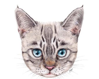 Kitten Art Print - FREE SHIPPING