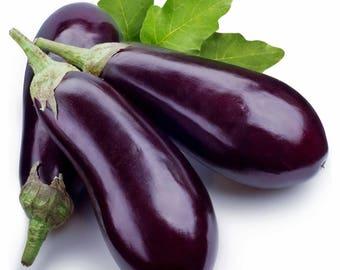Medium Long Eggplant Seeds Domestic (Aubergine) - 100 seeds - Solanum melongena - Organic, non-GMO