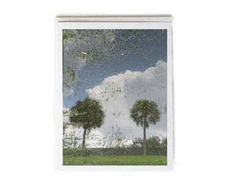 Two Palm Trees Notecard