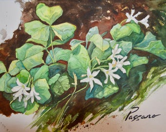 Clovers, painting