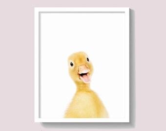 Duckling Print, Duck Print, Animal Wall Art, Nursery Decor, Kids Room Poster, Baby Shower Gift, Yellow and Grey Nursery Decor,  #436