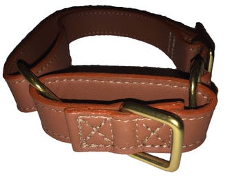 Dog Collar and Leash - Genuine Leather, Style & Train