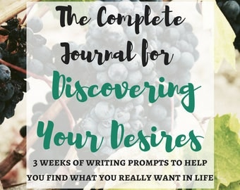 The Complete Journal for Discovering What You Want: The Manifestation Kit