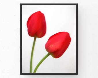 Red Tulips Art Print - Red Wall Art, Digital Download, Red Home Decor, Printable Wall Art, Tulips Printable, Floral Photography, Tulip Print