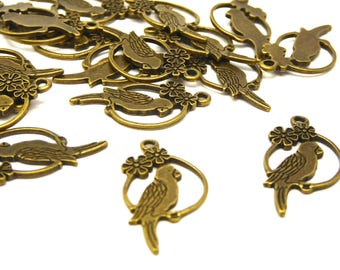 32 charms parrots 2.7 cm long bronze metal