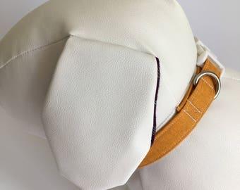 Autumn Glory dog Collar  -  30cm