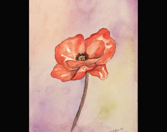 Watercolor and the poppy