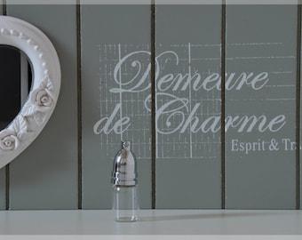 Vial bottle pendant with strap Kit