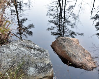 Reflections. Fine art nature photograph.