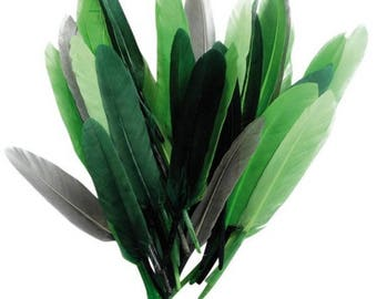 Feather Indian green shades - 10 15 cm - 10 grams - 40 feathers around new