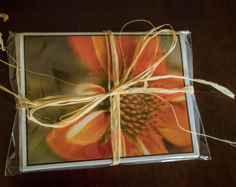 Prairie Petals Fine Art Note Cards