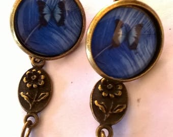 Earrings bronze superbecabochon amazing a beautiful blue butterfly in a blue background