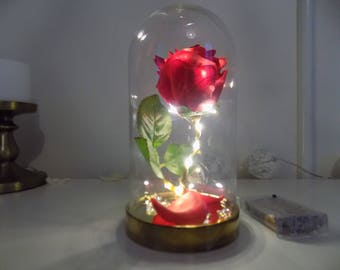 Beauty and the beast Rose light (Large and small)