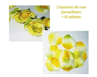 2 yellow/white (2 tones) fabric roses + 10 petals color matching (velvety) for scrapbooking