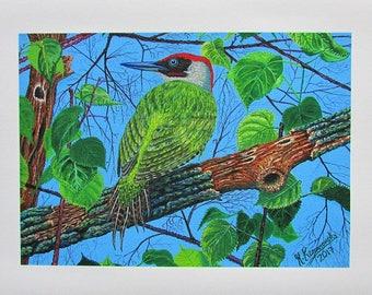 A4 Giclée Print entitled 'Green Woodpecker' from an original acrylic painting by artist Martin Romanovsky