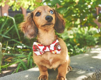 Dog Bow Tie | Bear On A Circle | Free Shipping to Canada
