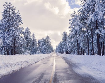 Winter, Trees, Road, Snow, White, Landscape Photo, Digital Download
