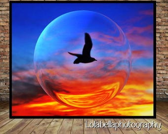 Sunset Photography Print, Seabird in Glass Sphere Painting Effect Print, Sunset Digital Photo, Digital Download
