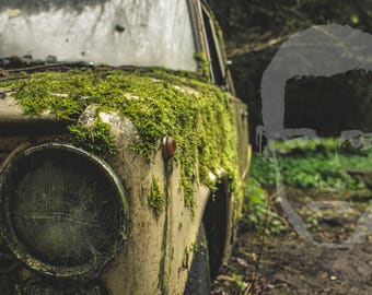 Lost in the Woods car graveyard-Vintage Industrial decor-Abandoned-Urban Exploration-Urbex-Photography-Photography