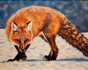 Fox on the snow
