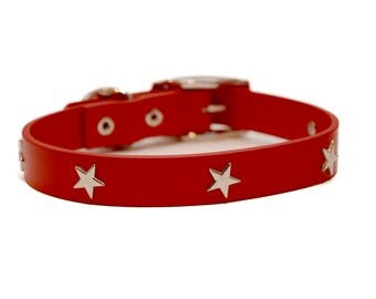 Silver Star and Red Leather Dog Collar