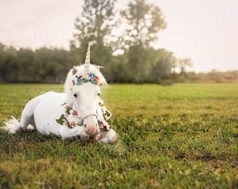 Unicorn Laying Down High Resolution Digital Backdrop