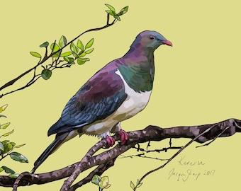 New Zealand Kereru (Wood Pigeon) bird on Photo Block, Digital painting