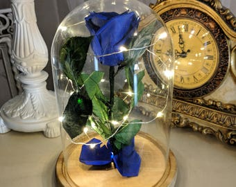 Real Blue Forever Rose in Glass Dome with LED lights,Glass Dome Rose with lights,Beauty and the beast rose,Valentines gift,enchanted rose