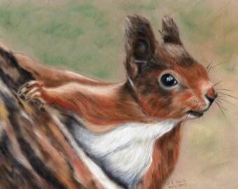 Red Squirrel Print - Squirrel Wall Art - Squirrel Artwork - Squirrel Print - Animal Picture - Squirrel Picture - Woodland Animal Picture