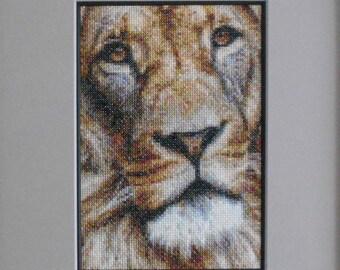 LION finished artwork