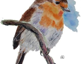 Cute robin Bird art watercolor print